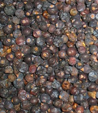 Dried juniper cones