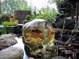 nordlicht skurril. Black Bedroom Furniture Sets. Home Design Ideas