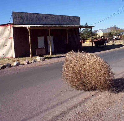 [Image: tumbleweed.jpg]