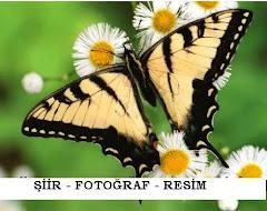 ŞİİR - FOTOĞRAF - ÇİZİM