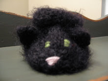 Blackie the cat