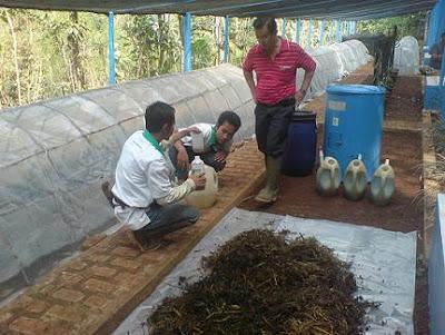Bisnis Pupuk Organik Tumbuh Kian Subur