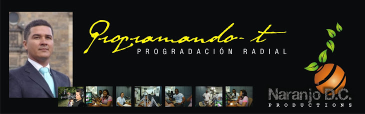 PROGRAMANDO-T