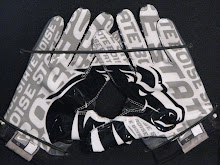 Nike Vapor Jet Gloves