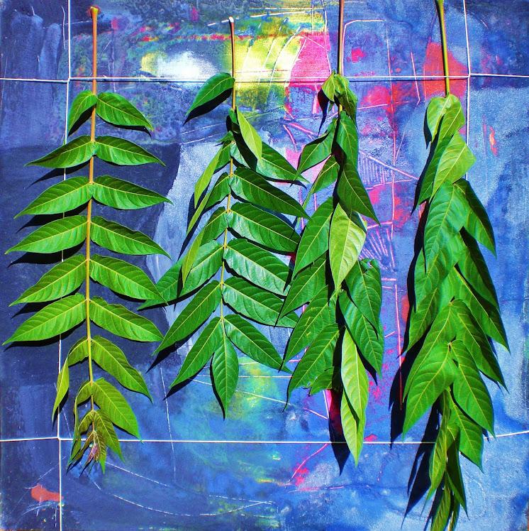 arte e natura, tela,smalti, foglie fresche da sostituire tutti i giorni