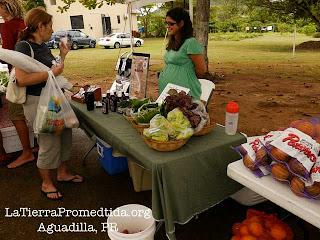 community vendors