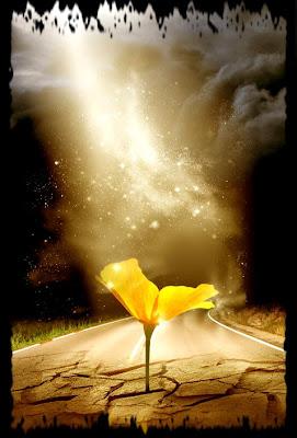 Flor y muerte