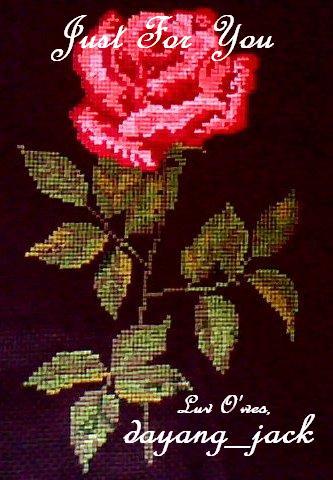 [rose2.jpg]