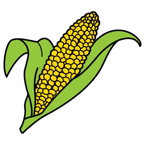 El conocimiento del sabor cocinando y disfrutando for Como cocinar mazorcas de maiz