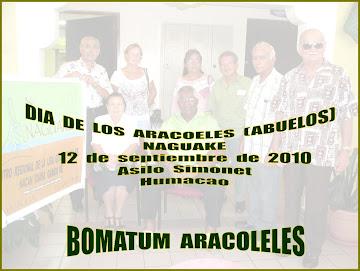 Liga  Honra  los  Abuelos(as)  Naguake