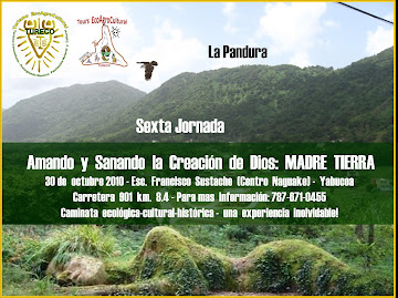 Jornada -  Octubre 2010