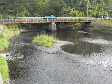 Eagleville Dam