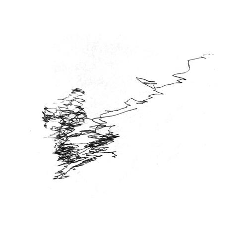 sismographic9/ Vers Mont De Marsan en descendant
