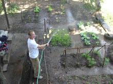 Gardens Growing