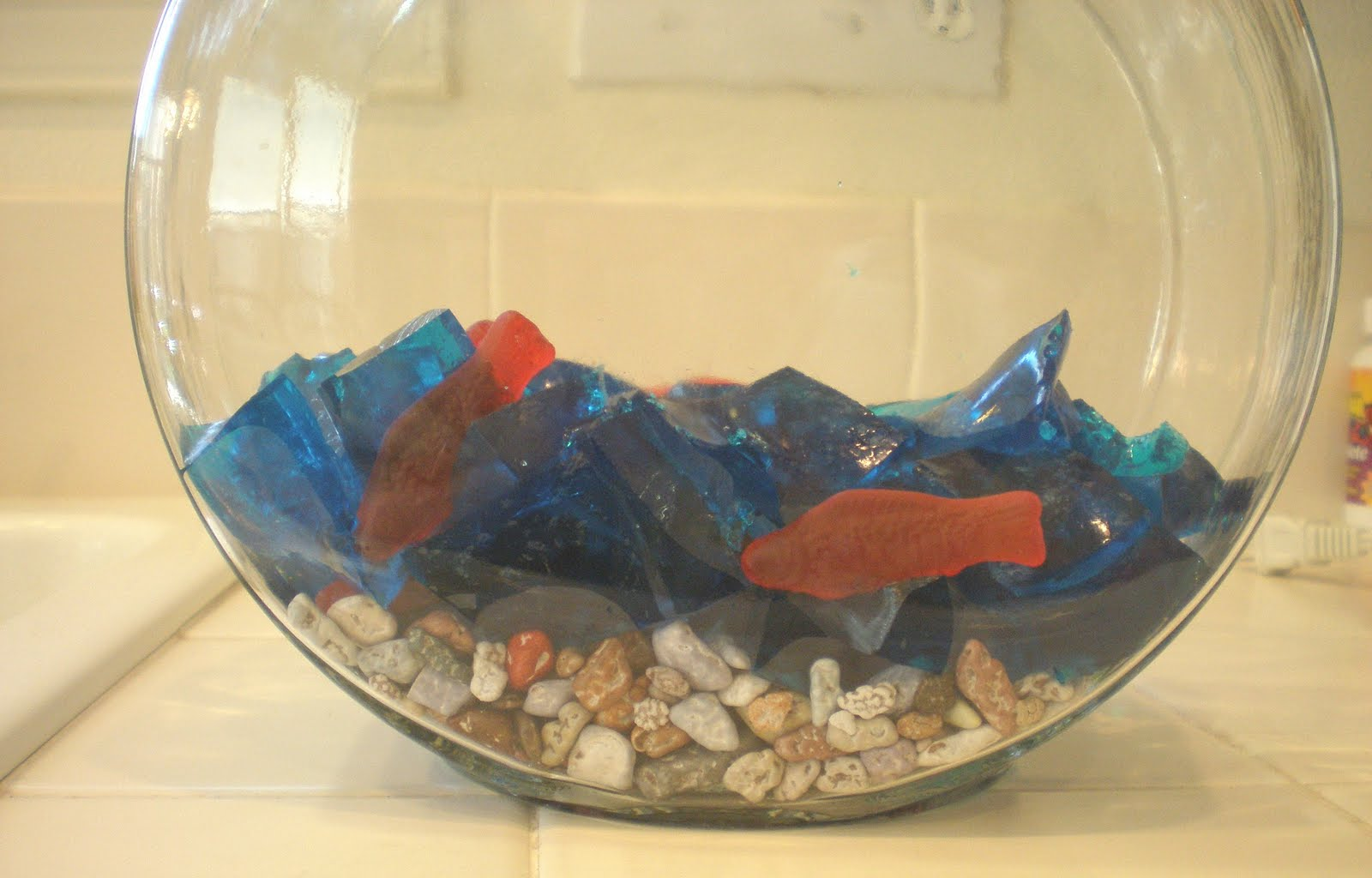 Freshwater fish bowl - I Remember Making This Years And Years Ago For A Friend S Children It Was Pretty Cool I Thought So My Kids And I Thought We Would Make It Again For Some