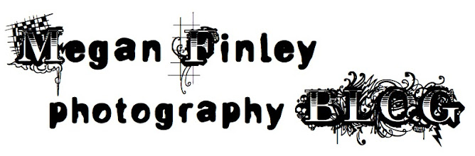 megan finley photography blog