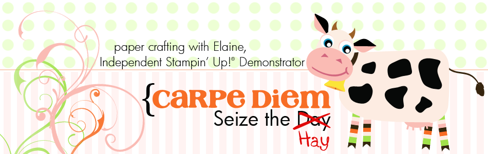 Elaine - Stampin&#39; Up! Demonstrator