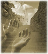 Que La Paz Circule en el Mundo