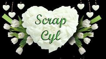 Scrap Cyl