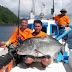 Ekspedisi Halmahera Utara: Ikan Besar di Pulau Terluar