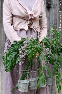 Gilet rose Jayko