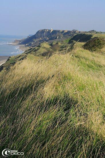 La falaise surplombant Port-en-Bassin