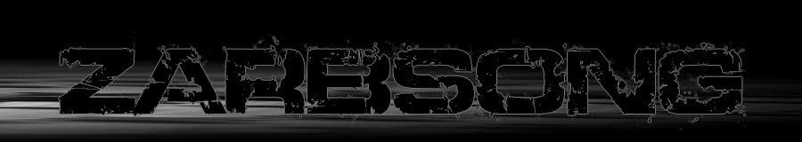Zarbsong - electrodub - drum'n bass - experimentale New+baniere