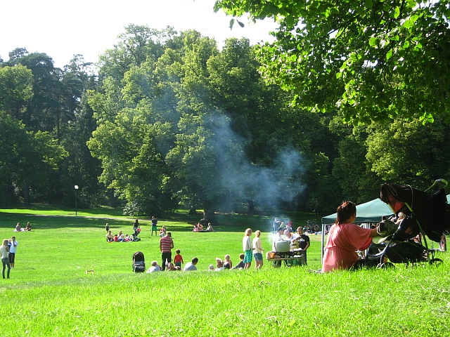 people bbqing in stockholm park
