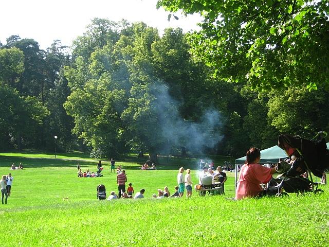 people bbqing in stockholm park