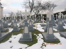 Cimitirul Lavrei Poceaev