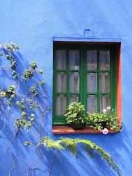 Frida's house