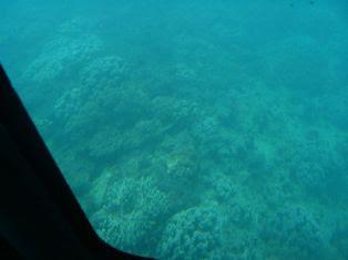 水中観覧船