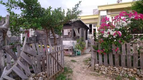 birafuya