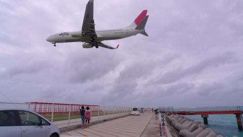 Boeing737-800(JA311J