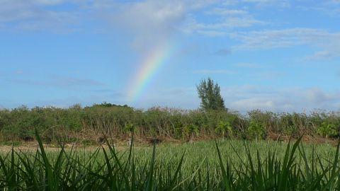 下地島で虹