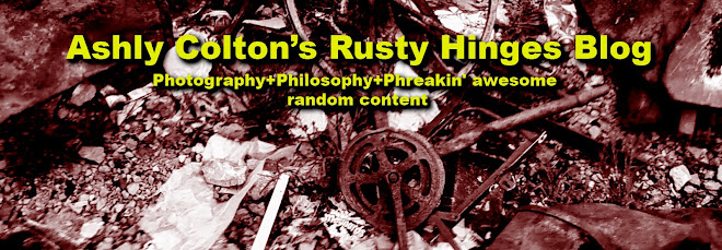 Ashly Colton's Rusty Hinges Blog