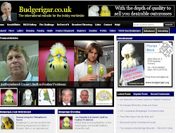 BUDGERIGAR.CO.UK