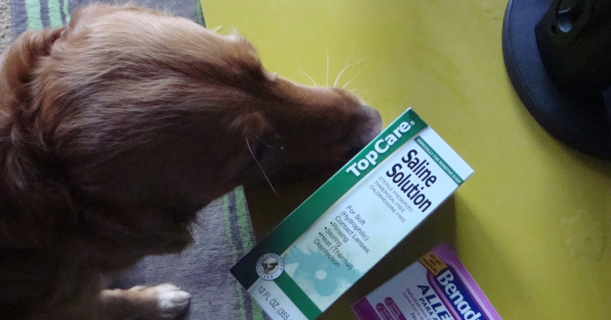 how to make saline solution for dogs