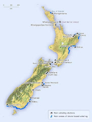 New Zealand - Coastal Shipping Routes