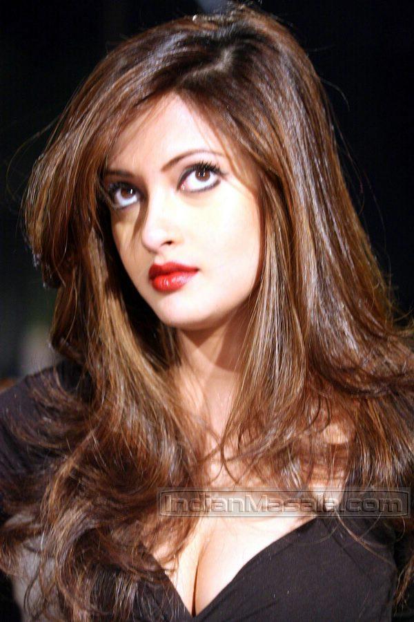 [Bollywood+Actress+Riya+Sen+sexy+hottest+photos.jpg]