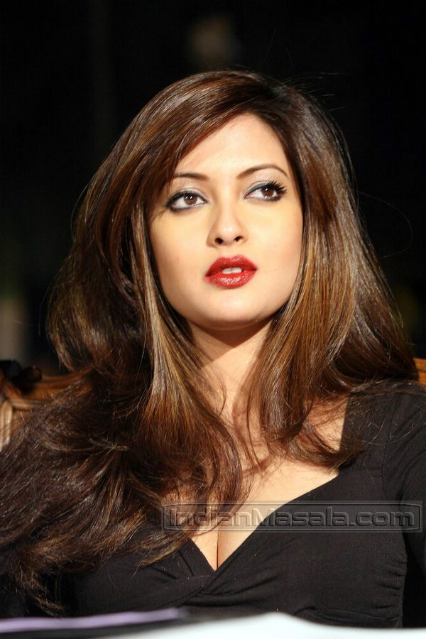 [Bollywood+Actress+Riya+Sen+sexy+hottest+photos+5.jpg]