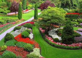 Paisaje bitacora curso de dise o de jardines ii cuman for Programa diseno de jardines