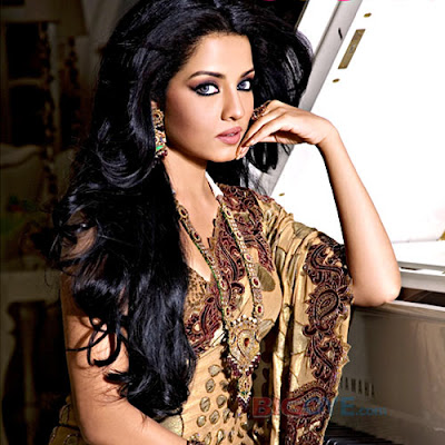 Celina Jaitly Sizzles in Sarees Photos And Wallpaper