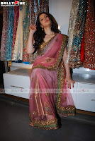 Zareen Khan Pink Sarees Photos