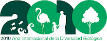 Any Internacional de la Biodiversitat