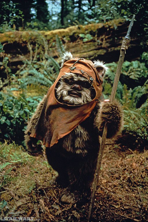 Running with scissors halloween costume ewok the costume is actually a lot like the max wolf costume i used his zip front pajamas as the pattern and added the hood making the belly a lighter color solutioingenieria Gallery