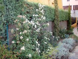 La Jardinería Sostenible