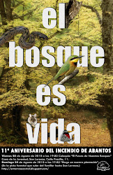 Coloquio sobre los bosques