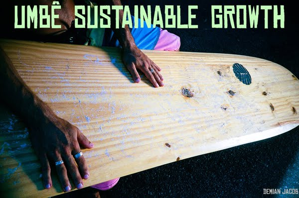 1-B SUSTAINABLE GROWTH