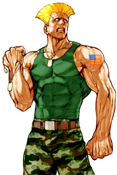 Gay street fighters photos 887